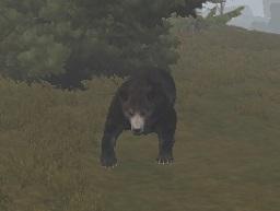 rust-bear